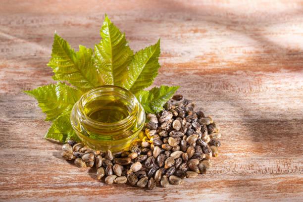 Comment utiliser l'huile de ricin pour les cheveux et quand l'utiliser ?