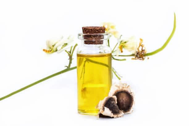 Moringa oleifera huile grains de moringa perte de poids