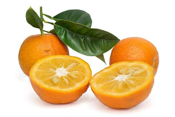 orange amere astuce minceur bruleur graisse naturel