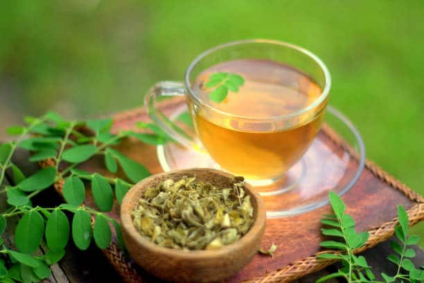 thé feuille moringa maigrir vite