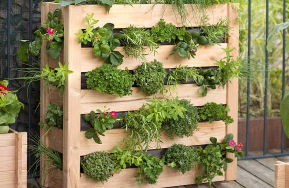 kit jardin vertical préfabriqué potager