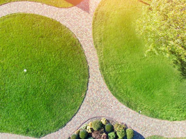 Plan potager : Comment organiser son jardin ?