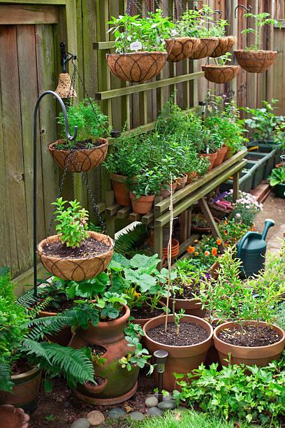 potager suspendu style de jardin pour petit espace
