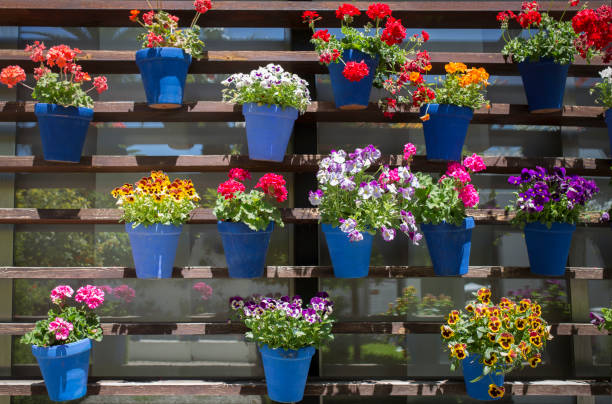 potager vertical mots muraux couleurs balcon terrasse