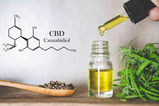 propriétés CBD corps humain consommation chanvre huile