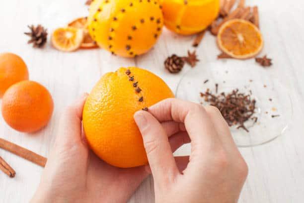 pomme ambre atelier DIY maison parfum intérieur